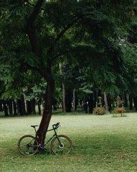 "Велосипед 28"" Marin Four Corners (2020) satin black 8"